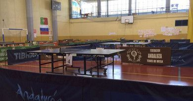campeonato tenis de mesa andalucia adaptado